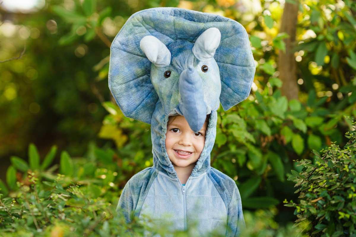 Las mejores ideas de disfraces de animales para niños
